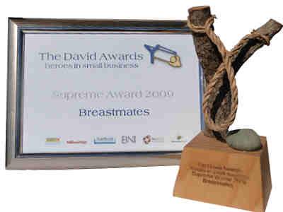 david_award_trophy