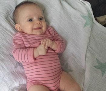 Baby Merino